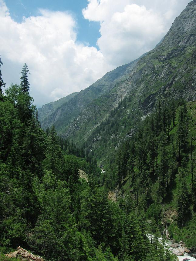 ウッタル・プラデーシュ州の急峻な渓谷を見下ろす。Looking down a steep river valley in the Utter Pradesh.