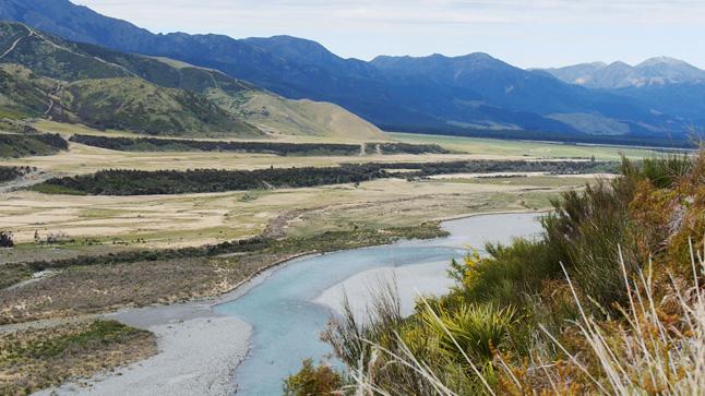 最高のロケーションに、絶妙な川の流れの強さと大きさあったWaiau river