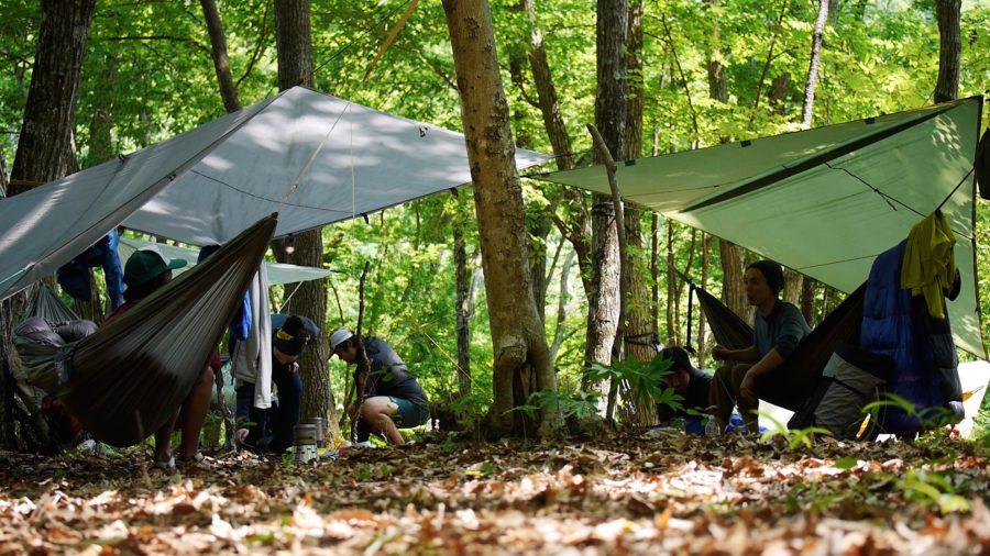 hammmock camp1