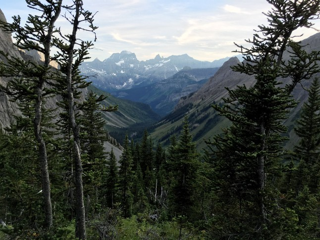 ノーザン・カナナスキス・パスからの眺め。The view from North Kananaskis Pass. Photo by Naomi Hudetz