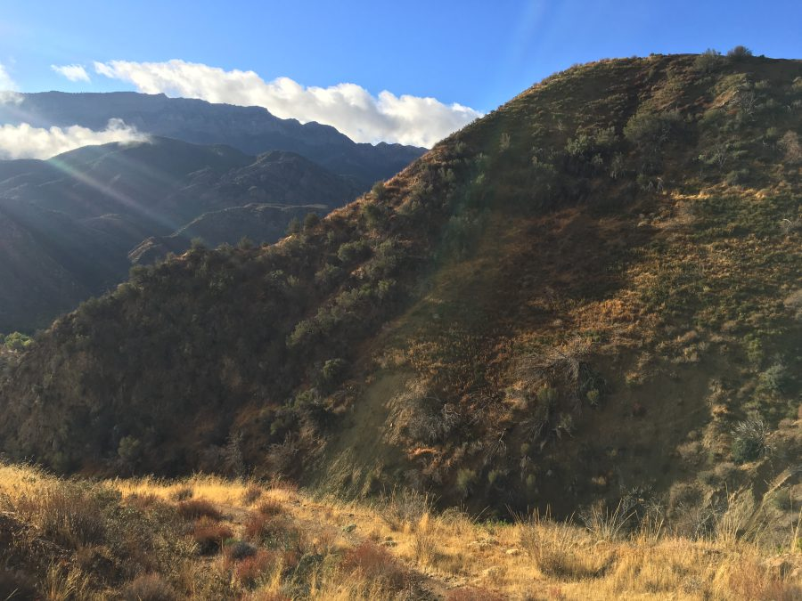 Hot Springs Trail in the Sespe Wilderness by Liz Thomas