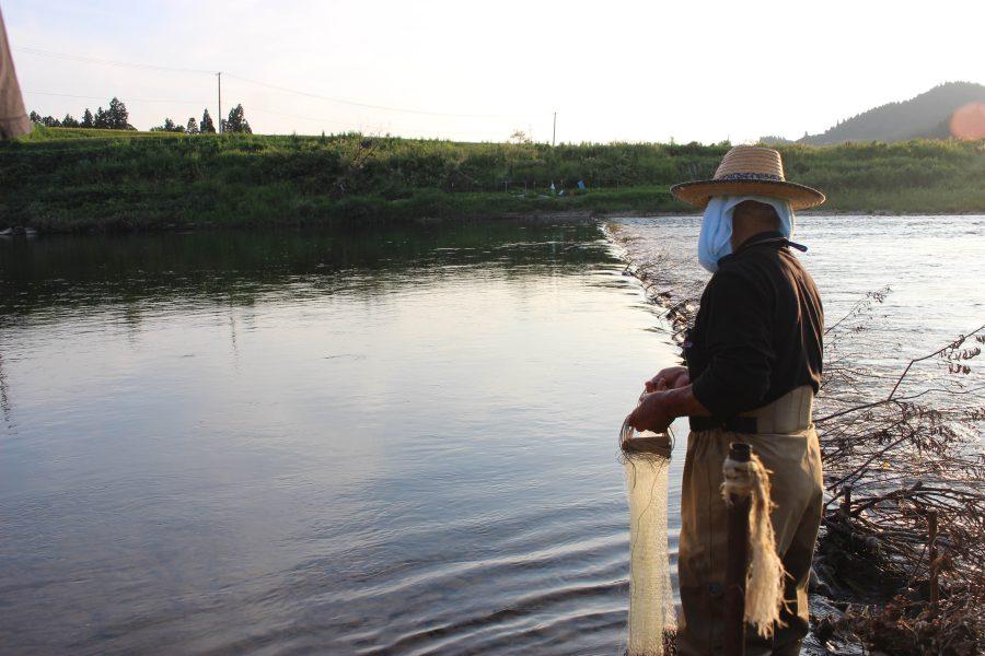 アユ漁 83歳の川の師匠