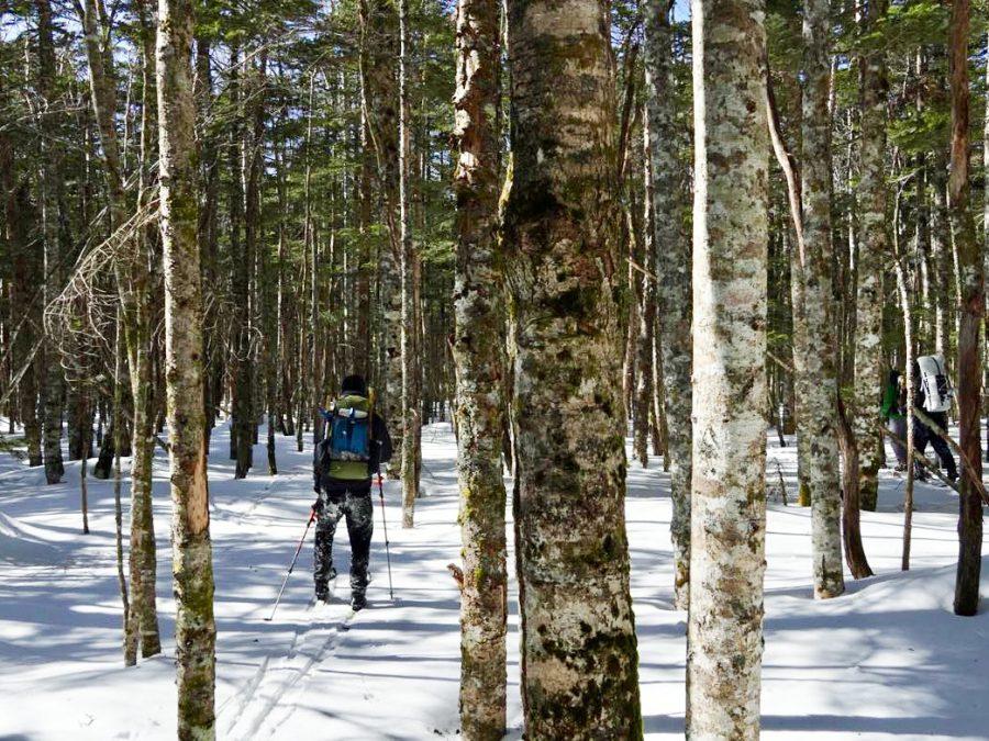 skihiking07_05