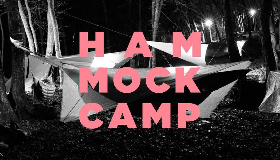 hammockcamp_main (1)